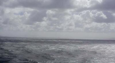 Landscape in video