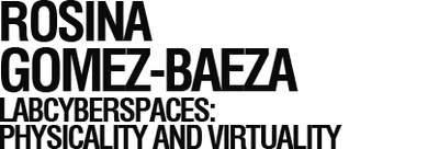 LABcyberspaces: Physicality and virtuality
