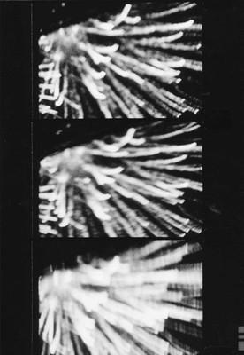 Feuerwerk, 2000