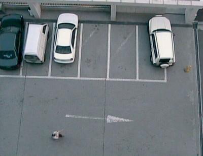 I. Parking (2002)