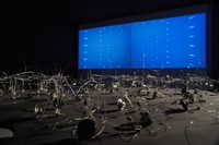 Luci. Sin nombre y sin memoria (Luci. With no name and no memory), 2008