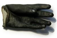 The Glove, 2008