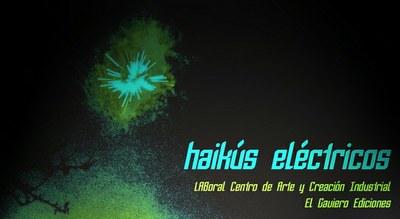 Nacho Montoto and Camilo de Ory win the First Poetry Contest: Haikús Eléctricos