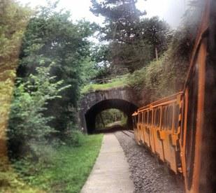 Tren minero del Ecomuseo del Pozo de San Luis