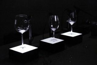 Autopsy glass
