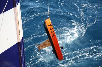 II Beca de producción Ciencias del Mar