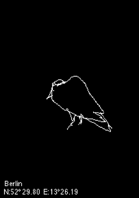 Crow Drawings, 2008