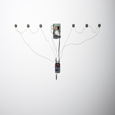 Juvenile Amplifier (2009)