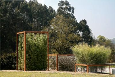 Reflexiones, 2007