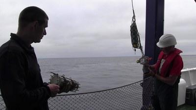 Andy Gracie presenta en la Antigua Rula '200 metros,' una investigación sobre los cambios del mar profundo