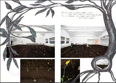 LABoral presenta el jueves, 10, el catálogo de 'En barbecho', de  Alicia Jiménez